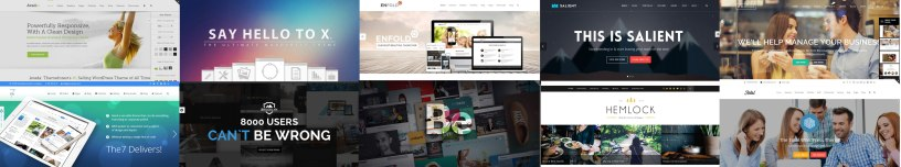 10 Top Selling WordPress Themes